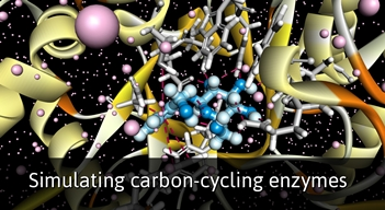 Simulating Carbon-Cycling Enzymes
